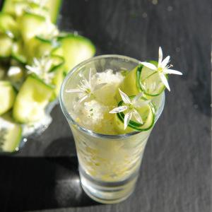 wild garlic tzatziki © www.ice-cream-magazine.com